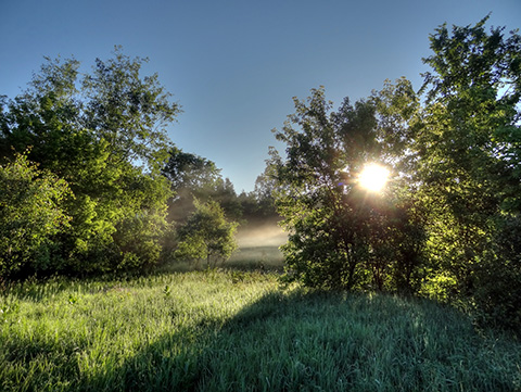 Sunrise on a June morning at High Lonesome Nature Reserve